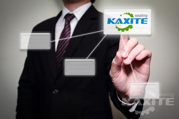 kaxite sealing