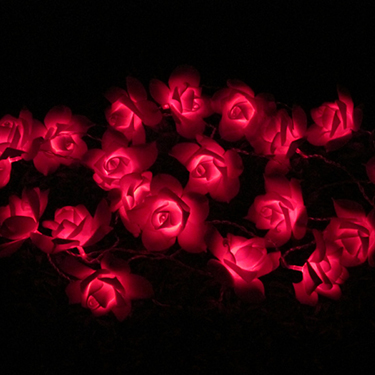 Solar Rose String light