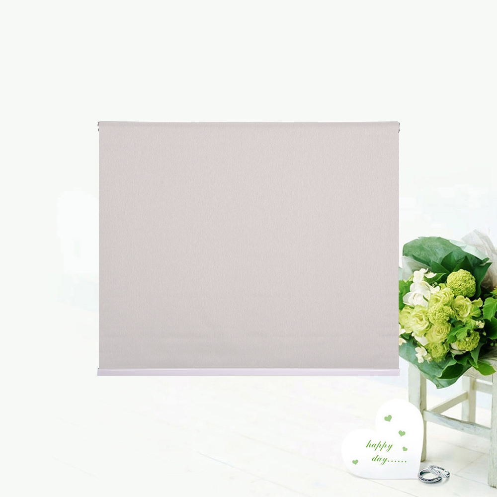 Blackout Blinds Plain RB-P01/P02