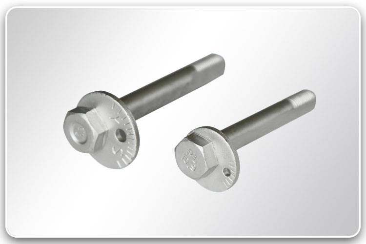 Stainless Steel Bolt with Scaled Washer