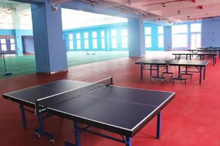 High quality table tennis PVC sports flooring colorful vinyl flooring