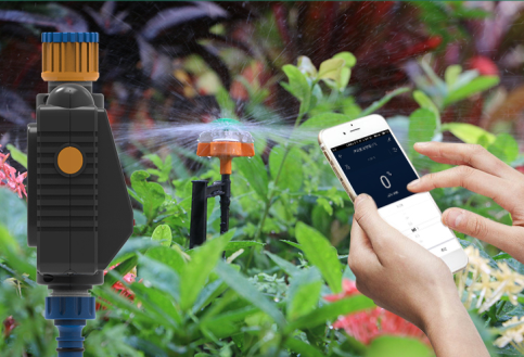 Create an automatic plant waterer for plants to drink themselves