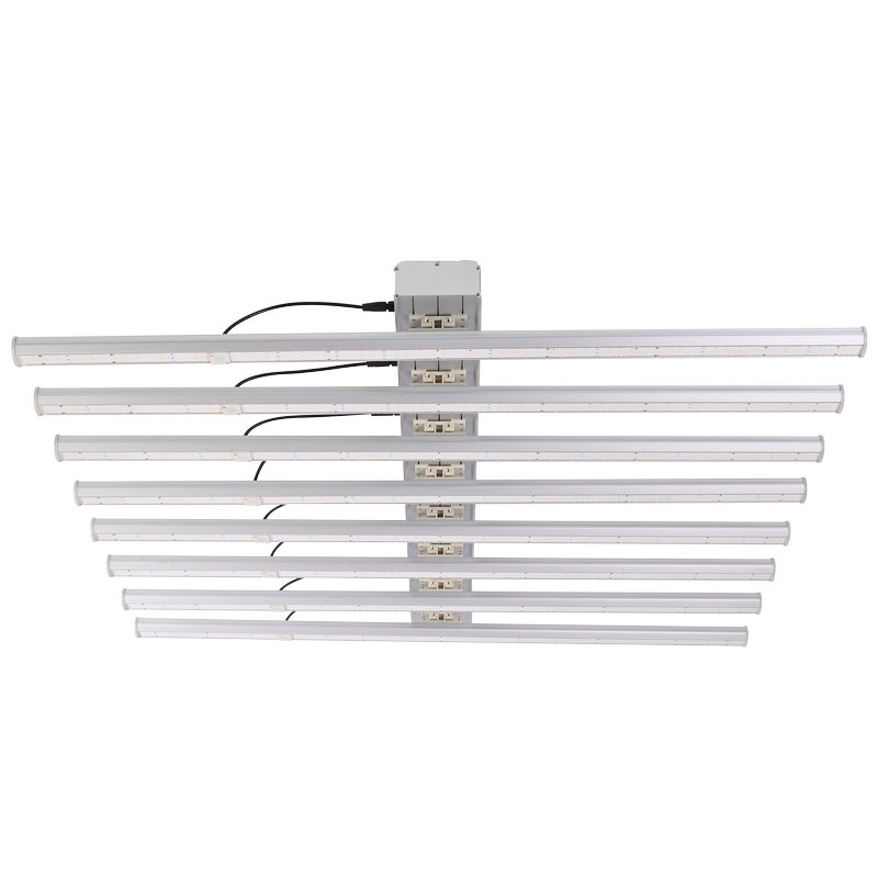Which is more important, planting technique or LED grow light?