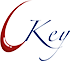 If the car key is lost, the original key data should be cleared in time - News - LEDY TECHNOLOGY (HONG KONG) CO., LIMITED.