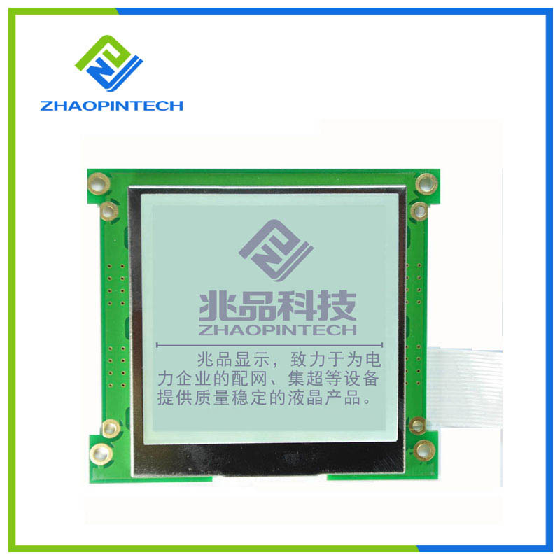 160x160 Graphic LCD Display