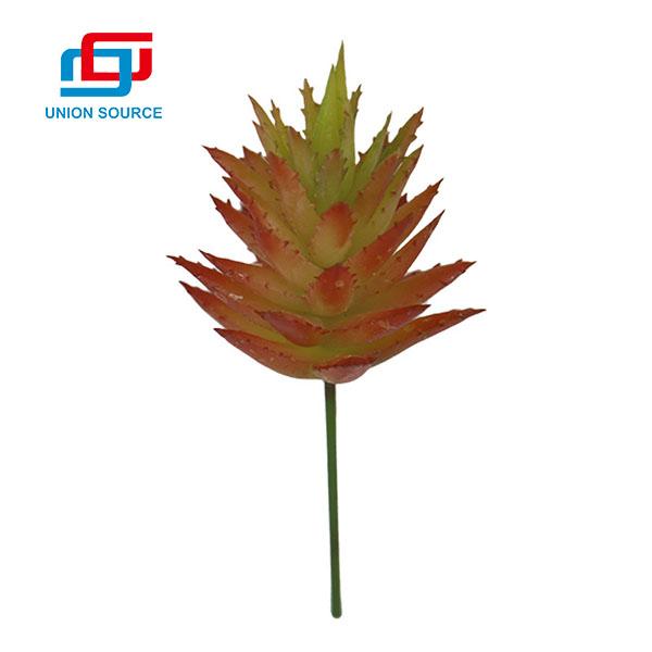 Най-продаваната конкурентна цена бодливи алое растения за декорация