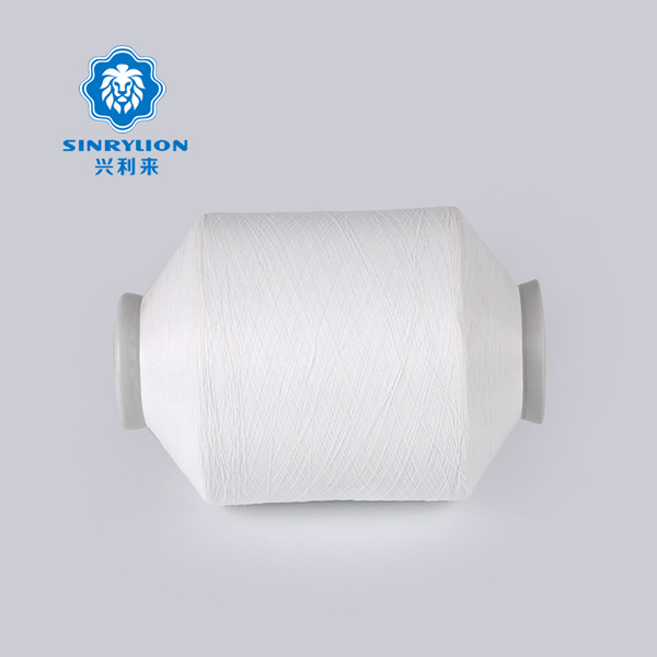 Full dull Raw White Nylon Twisted Yarn