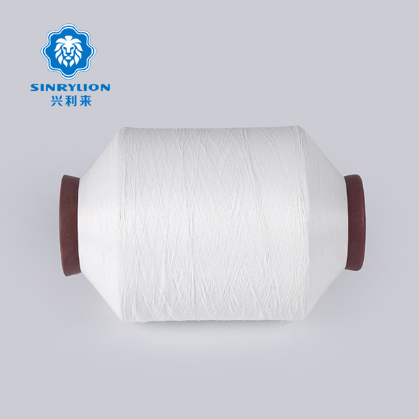 Nylon Twisted Warp Yarn