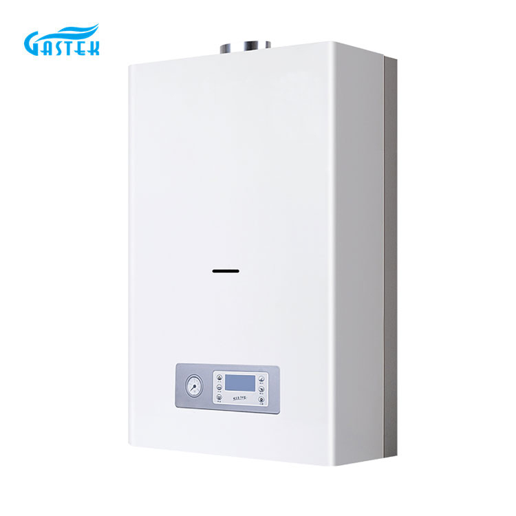 Common Gas Boiler