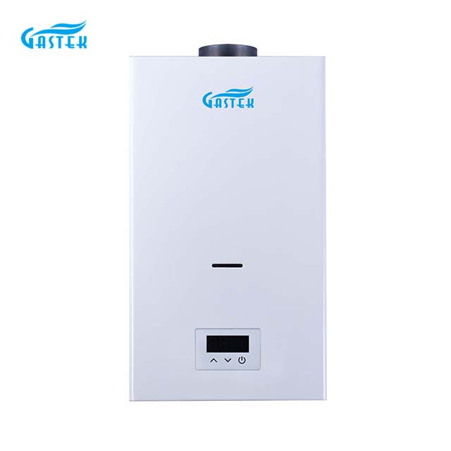 Constant temperature flue type gas water heater powered by electricity