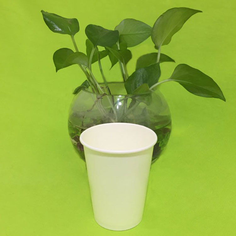 100% Biodegradable 8oz Paper Coffee Cup