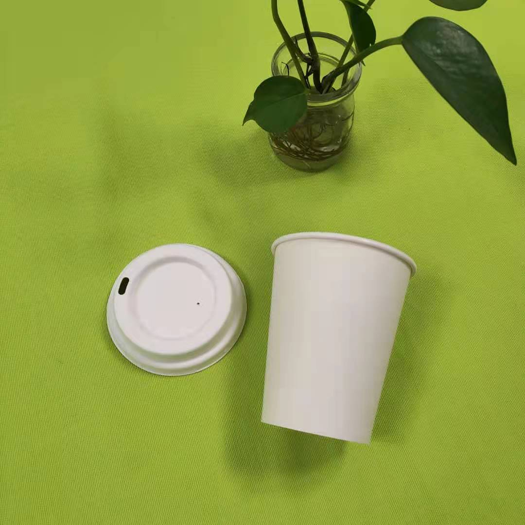 more information about bagasse pulp tableware