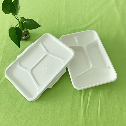 bagasse 5 compartment tray with lid