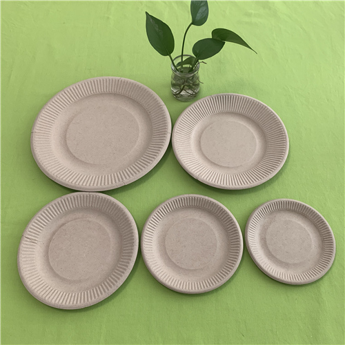 fancy compostable plates
