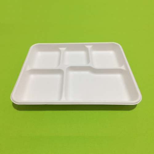 biodegradable lunch trays