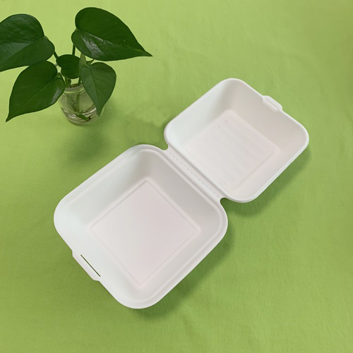Sugarcane food containers