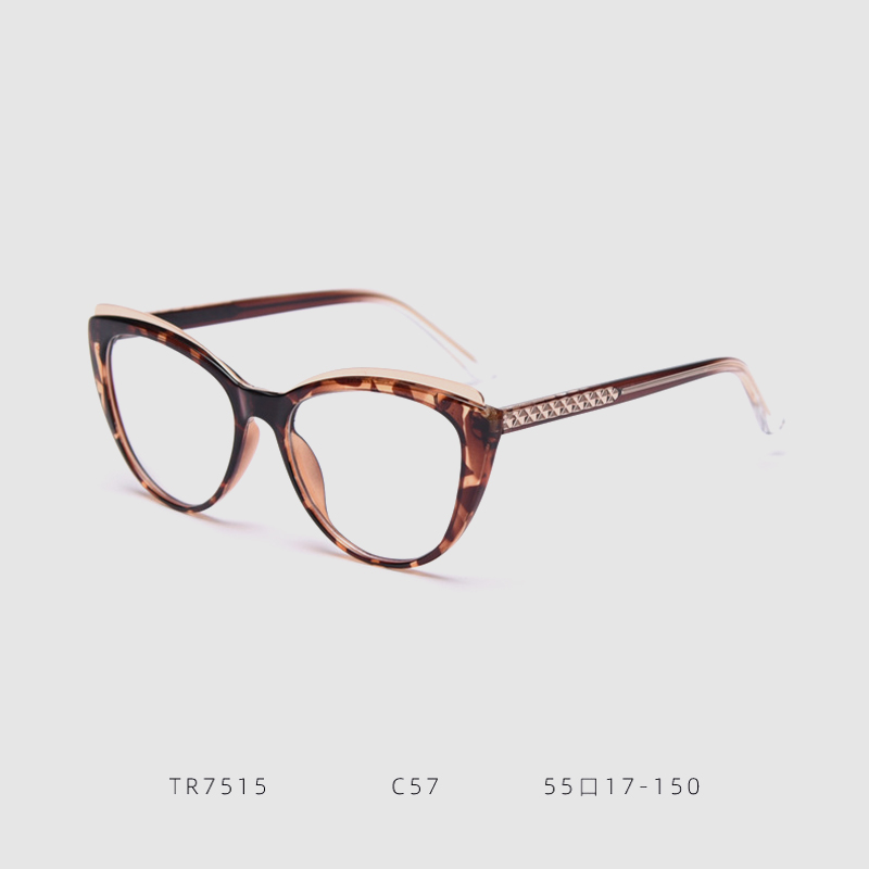 Classic TR Spectacle Eye Glass Frames Wholesale In China