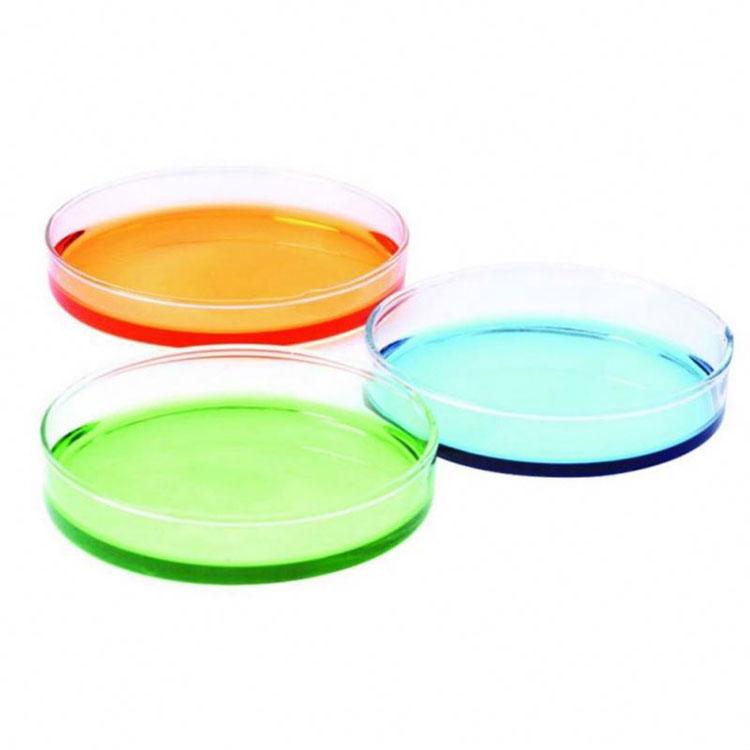 Glass Petri Culture Dish