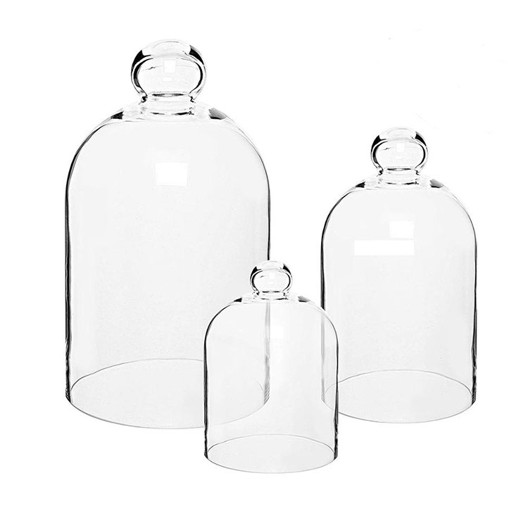 Laboratory Glass Bell Jar