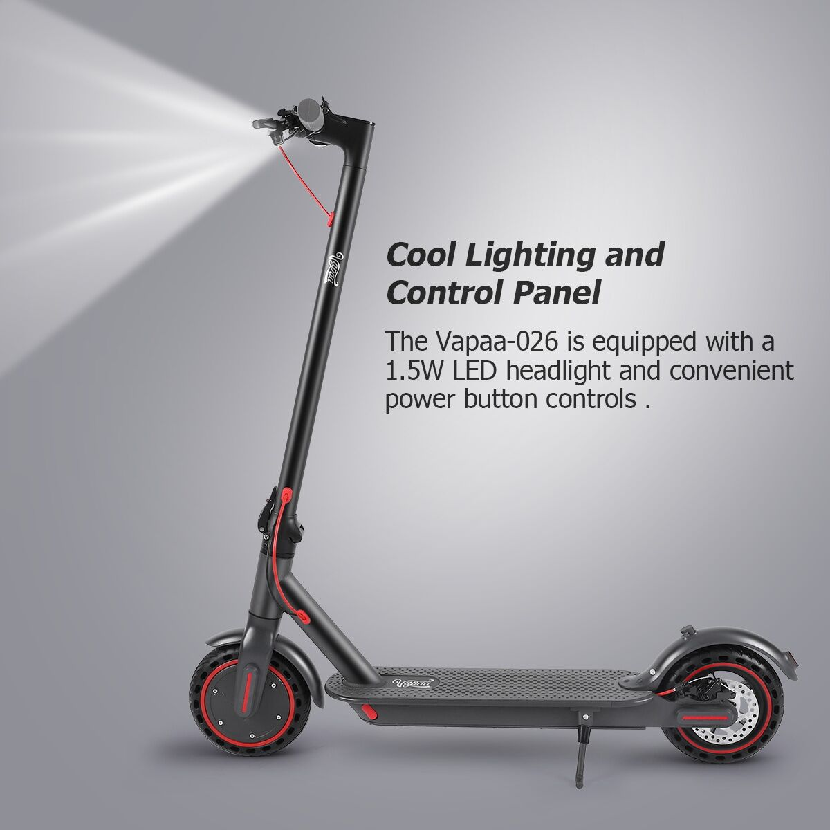 250W Electric Scooter With Charger