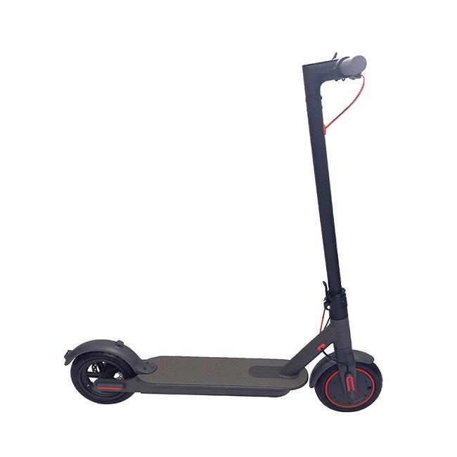 充電器付き250W電動スクーター