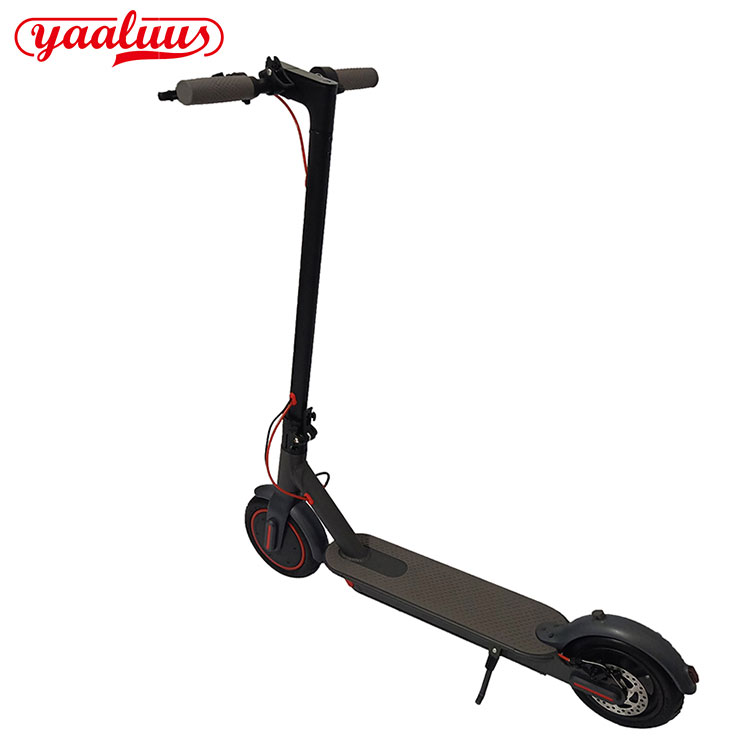Electric Scooter Adult Pro