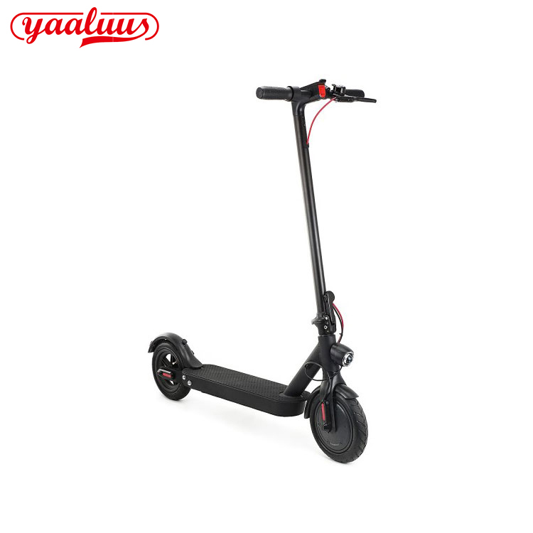 Electric Scooter Free Shipping