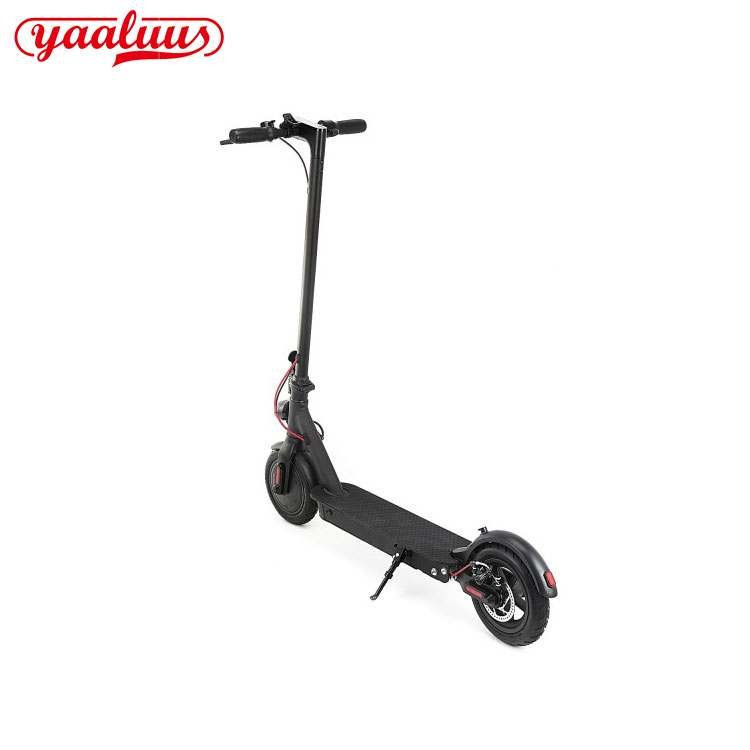 Moped Electric Scooter