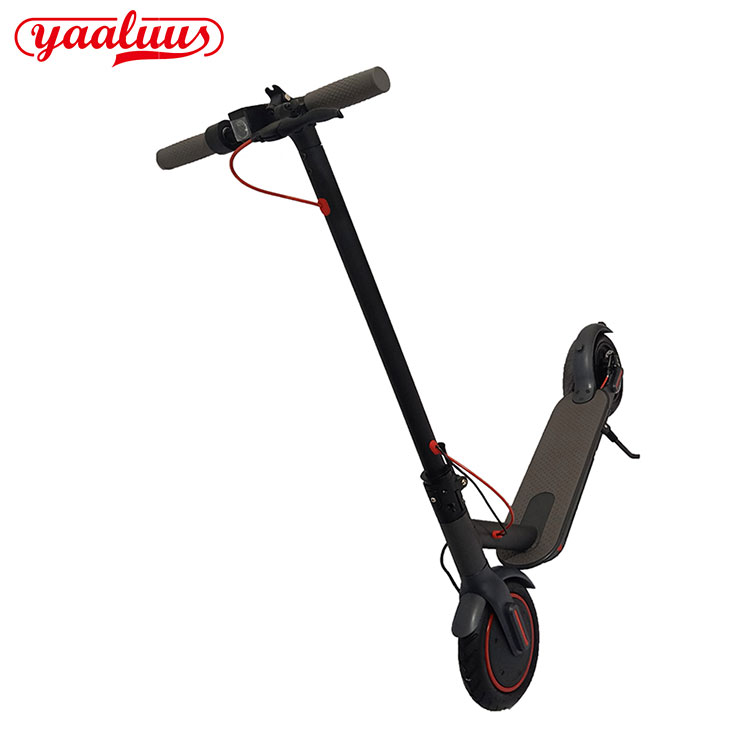 Wide Wheel Electric Scooter