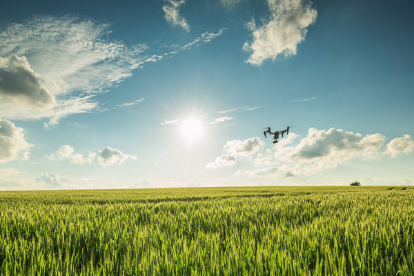 The landing of drones in the agricultural field