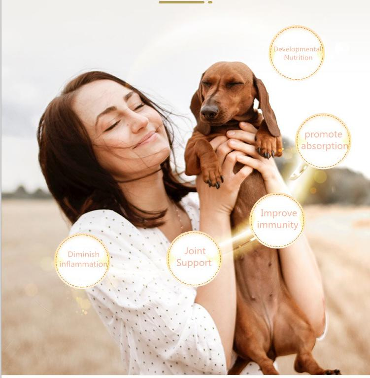 Complete Nutrition Adult Dog Food For All Breeds