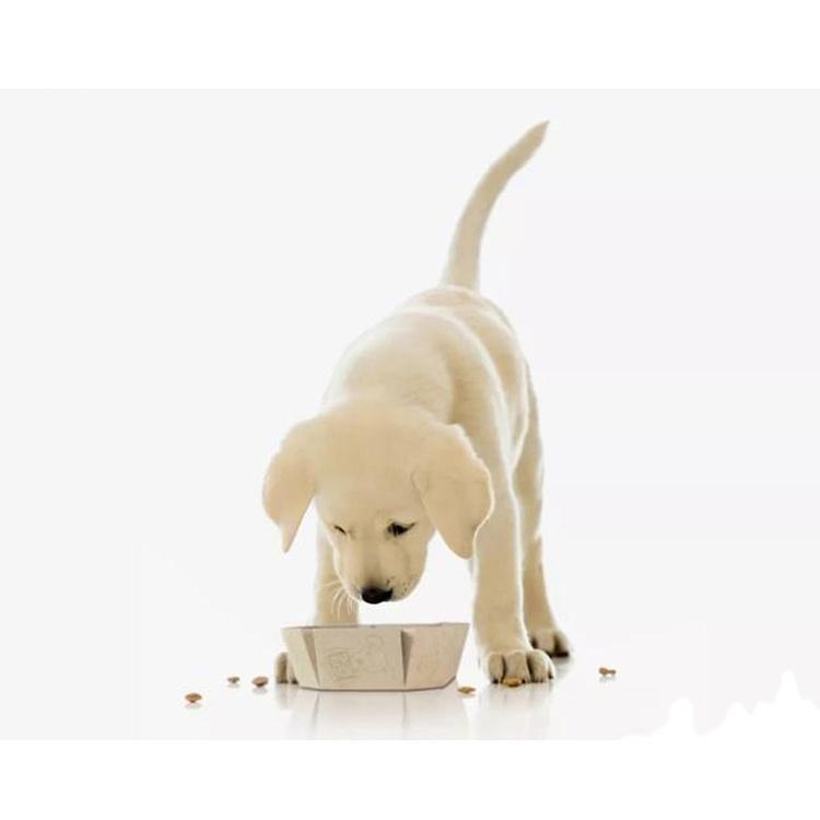 Puppy Dog Food Juvenile Dog Food