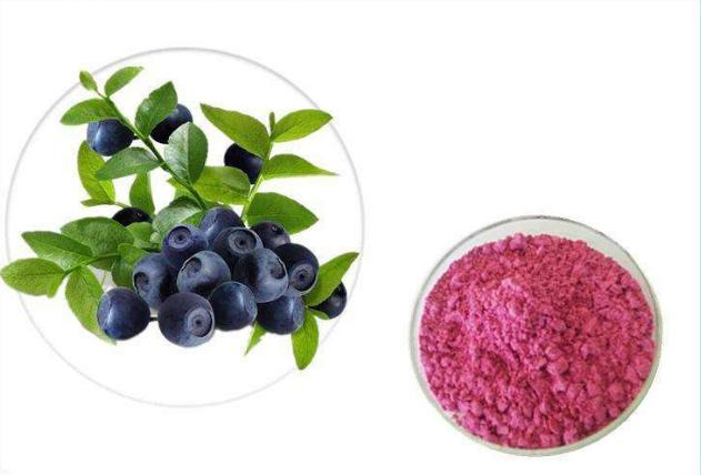 Probiotic Powder For The Elderly To Regulate The Intestines