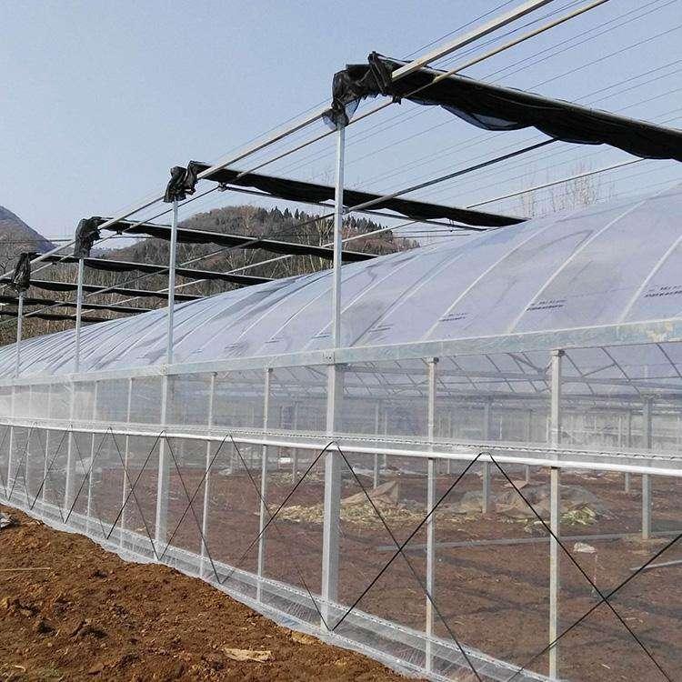 multispan film greenhouse overview