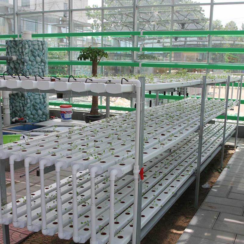 NFT vertical farming