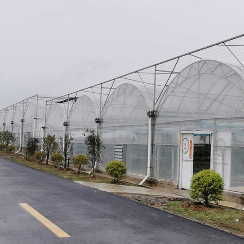 tropical greenhouse price