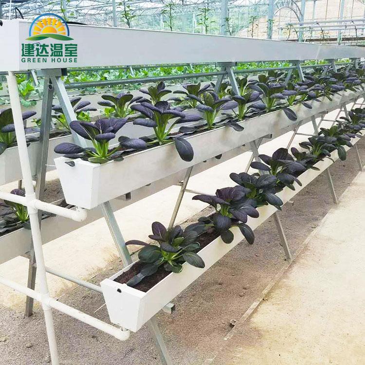 Rainure de gouttière de plantation de type A à travers la culture hydroponique de substrat pour la laitue aux fraises