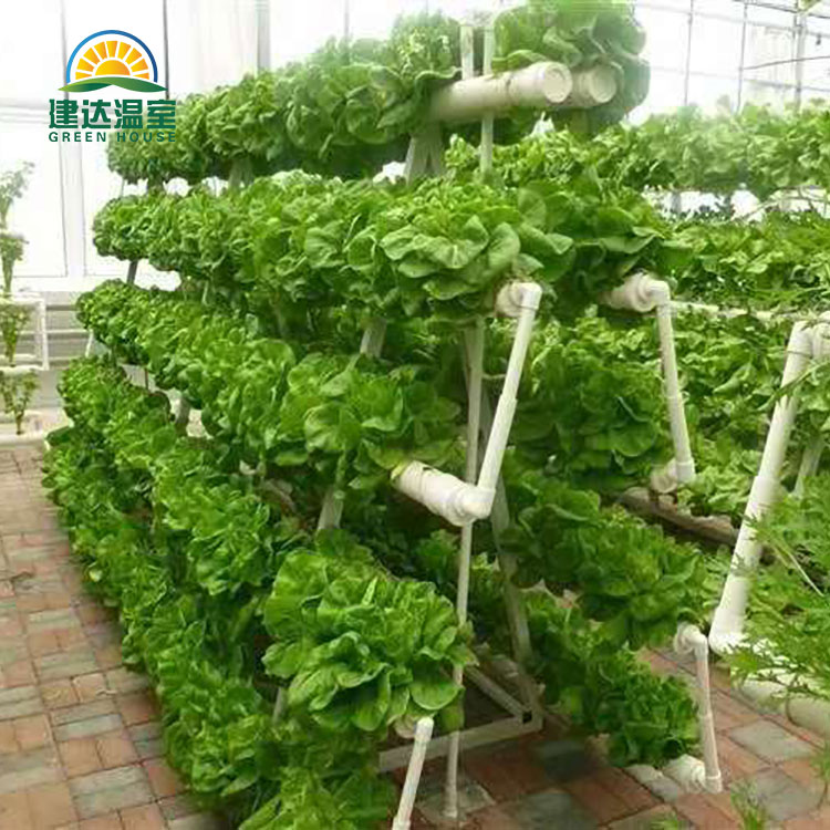 نظام الزراعة المائية المسطح NFT
