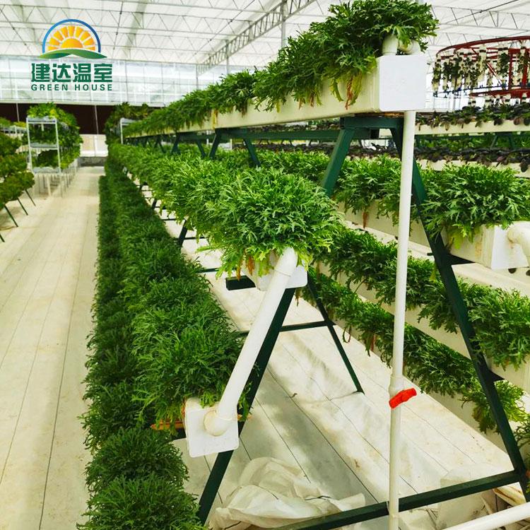 Lameda toruga Nft hüdropooniline süsteem leherohelise salati istutamiseks