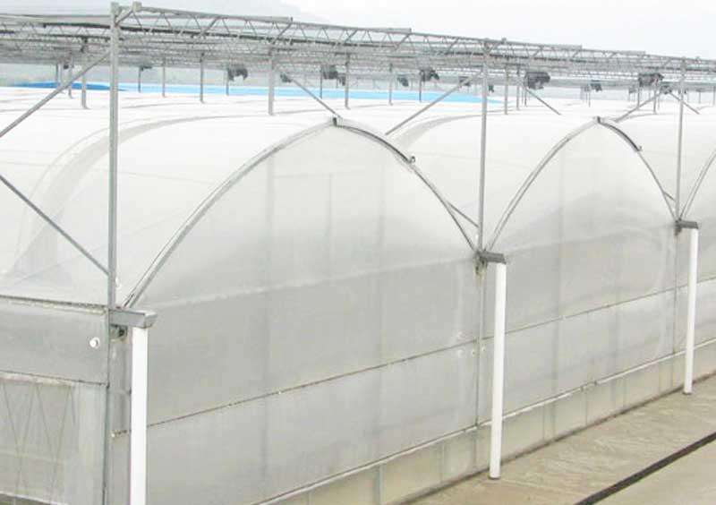 chian greenhouse