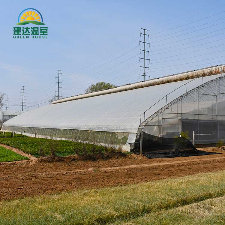 Köögiviljakile kasvuhoone