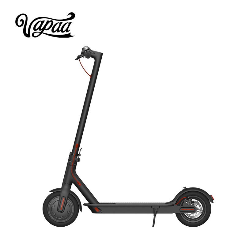 Big Electric Adult Scooter