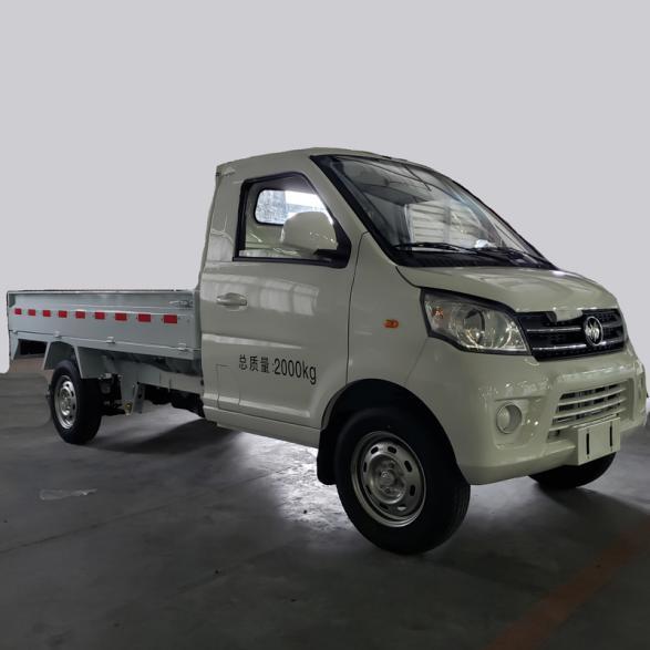 N30 Manual Transmission Mini Truck