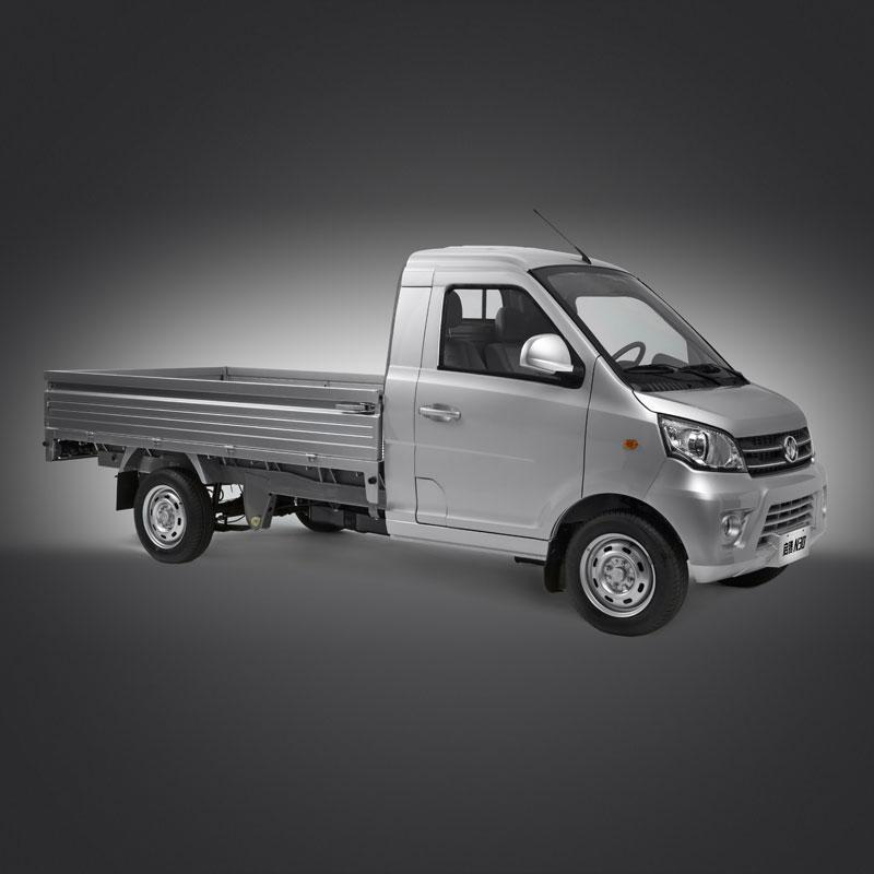 N30 Mini Truck