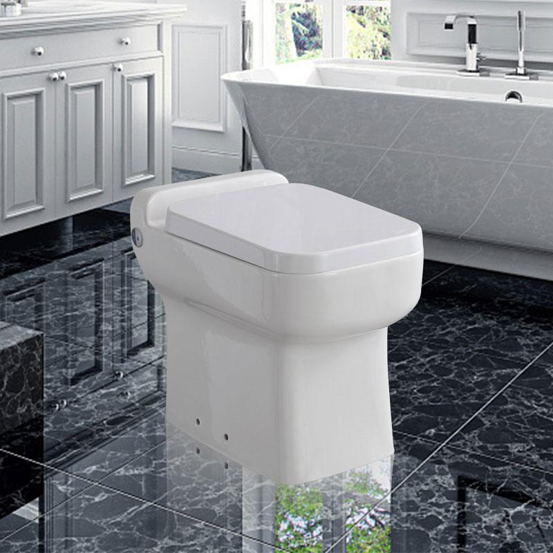Bathroom One Piece Floor Mounted Ceramic Macerator Toilet
