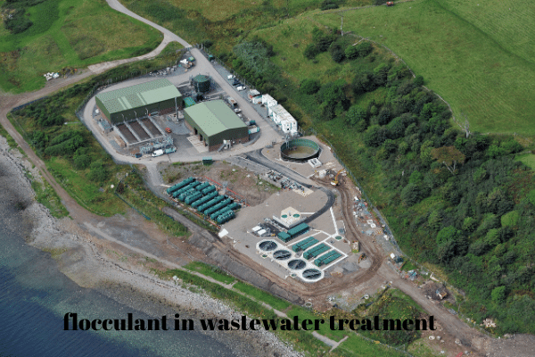flocculant in wastewater treatment