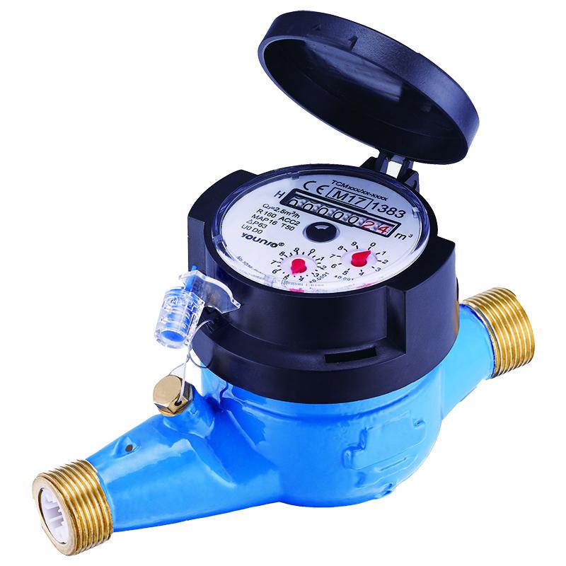R160 Multi Jet Dry Dial Water Meter