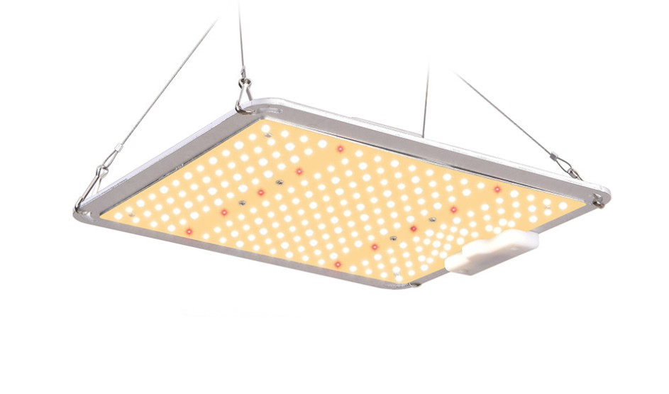 110W Quantum Board LED Grow Light